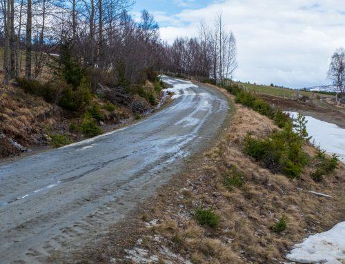 Fjellveier 2021, nå er alle veiene åpnet – sist oppdatert 29/6!